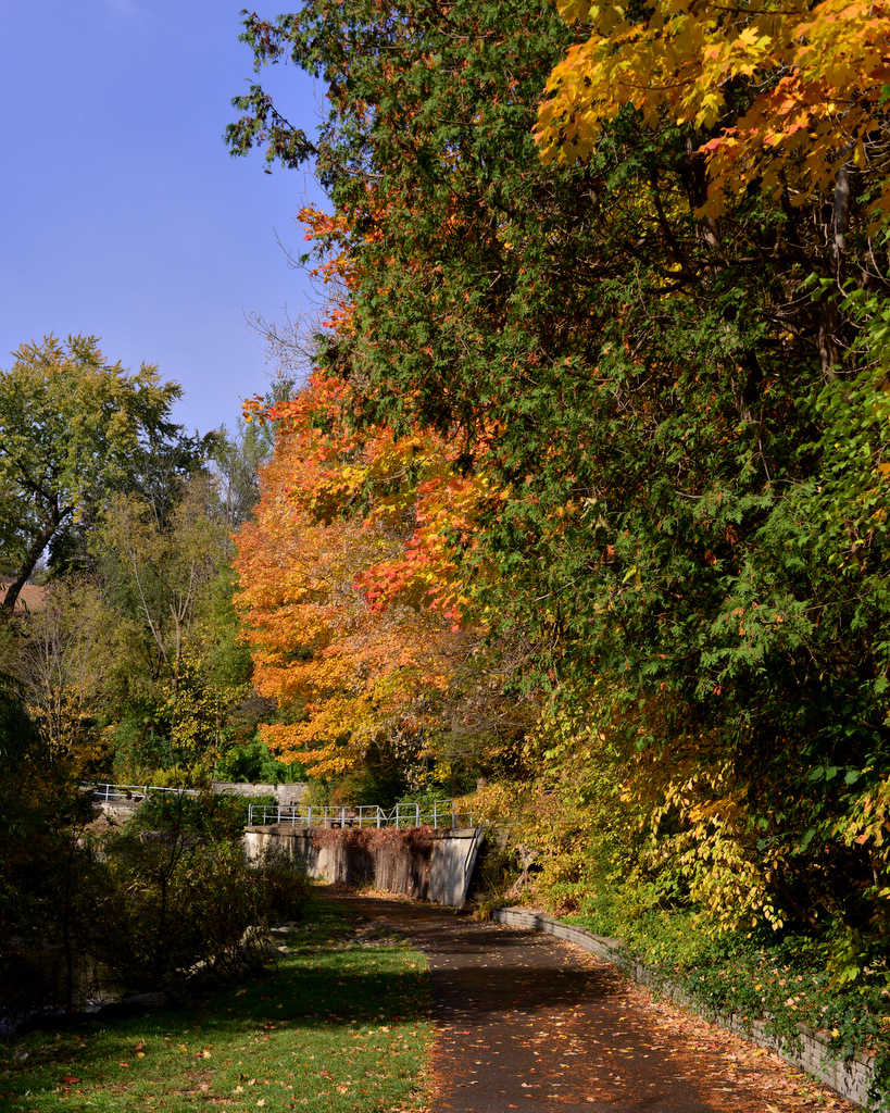 Fall 2012 in Edwards Gardens and … | JBIPix - A Personal Photoblog