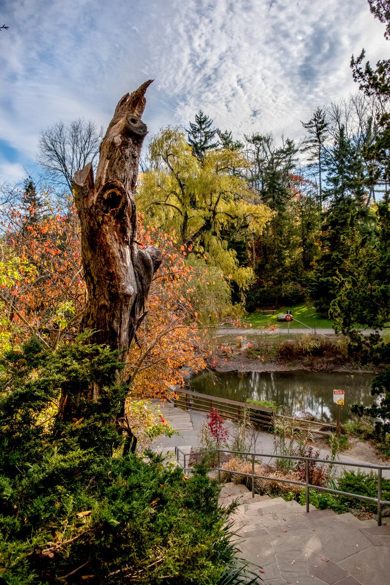 edwards gardens   JBIPix - A Personal Photoblog   Page 14