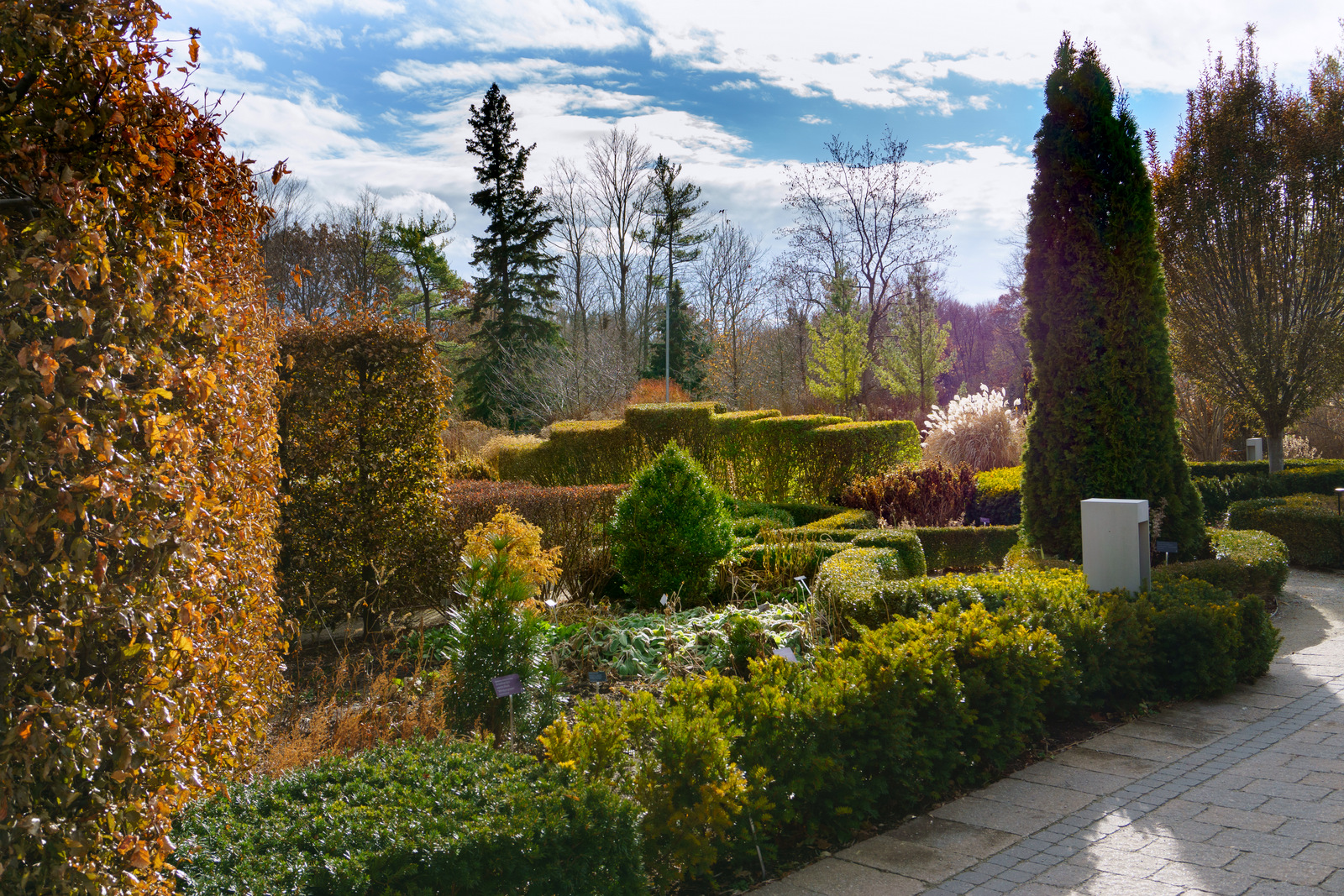 A Late November Day at Toronto Botanical Garden and Edwards Gardens ...